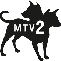 MTV2 Channel